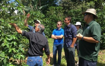 Specialty Coffee Farm Due Diligence Tours Panama: 4 Spots Available!